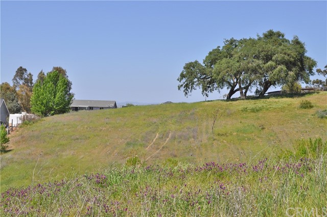 5195 White Tail Place Paso Robles Home Listings - RE/MAX Parkside Real Estate Real Estate